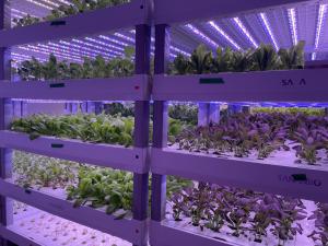 Second Chances Farm in Wilmington, DE